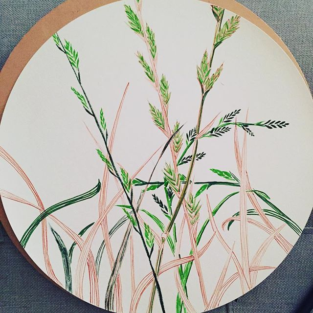 #grass grows everywhere in the #city, be it wild or groomed, but if u look closely, u'd c they have subtle differences. For this #drawing, I found just outside here in #hayesvalley #sf. 24/ #the100dayproject #100daysofBotanica #drawing365 #blog #disk #mujisketchbook #sakurapens #brushpens #inkart