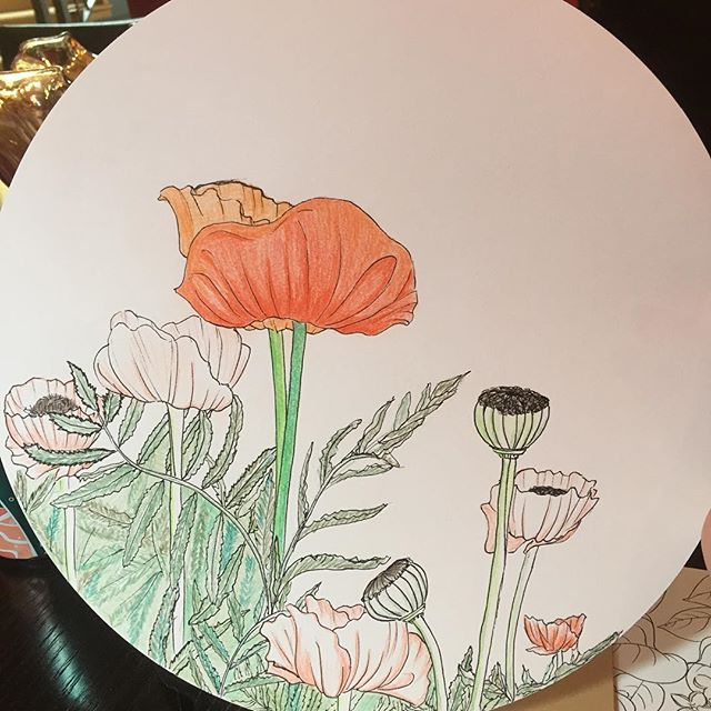 #poppies r the theme for this #drawing 47/ #the100dayproject #100daysofBotanica, this was in full #bloom in #Michigan I am not good with leaf details so I'm just gonna stop now. #colorpencils with #unipinfineline on #disk #mujisketchbook #sf #blog #flowers